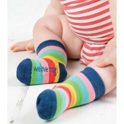 Lot 3 paires chaussettes coton bio Eté