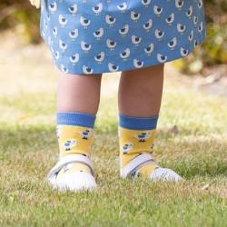 Lot 3 paires chaussettes coton bio Seagull