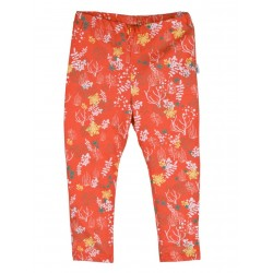 Legging coton bio Orange 3-6 Mois