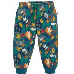 Pantalon Coton Bio Steely