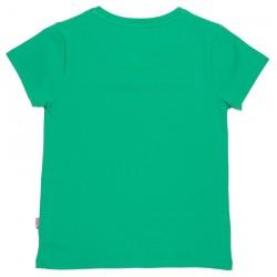 Top-vert