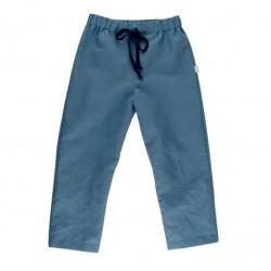 Pantalon coton bio Bleu