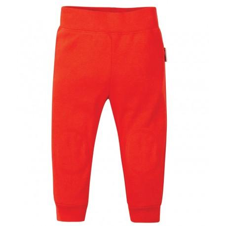 Pantalon coton bio Rouge