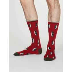 Chaussettes bambou Pingouin