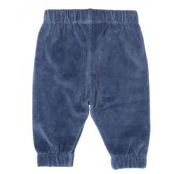 Pantalon coton bio velours marine Pingouin