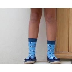 Lot 3 paires chaussettes coton bio Dauphin